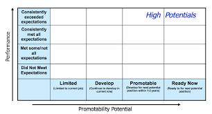Succession Planning Chart Case Succession Planning Process We Design Implement