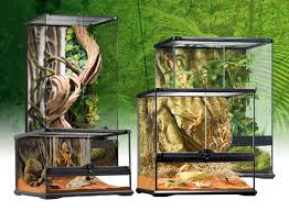 Natural Terrarium Small