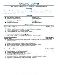 Livecareer My Perfect Resume Livecareer My Perfect Resume Review
