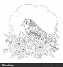 花のファンタジー鳥大人と子供のための塗り絵黒と白のベクトル図
