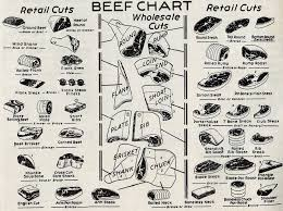 Veal Meat Chart A 1954 Chart Of Veal And Beef Retail Cuts The Mid Century Menu