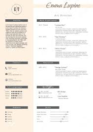 Resume Infographic Template template Resume Infographic Template 80