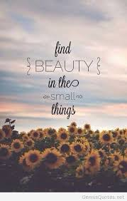 Inspirational Quotes For Beauty Best Of Beauty Inspirational Quote