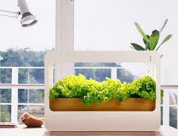 11 best indoor herb garden kits in 2021