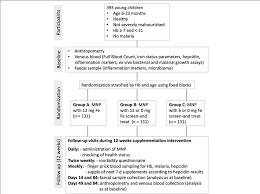 Main Study Flow Chart Legend Hb Haemoglobin Fe Iron