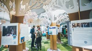 Image result for Transformative Cities