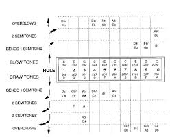 Notes And Approximate Frequencies Of A Ten Hole Diatonic