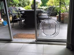 glass pet door