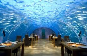 gourmet restaurants new york. under the sea: guests at ithaa undersea restaurant dine a clear, vaulted gourmet restaurants new york
