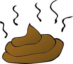 Image result for poop