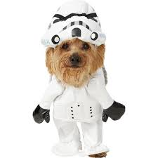 Ups Dog Costume Size Chart 35 Funny Dog And Puppy Costumes For 2019 Cute Pet