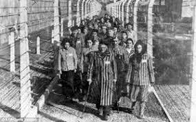 essay on n genocide in org  n genocide of 1915