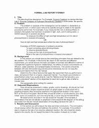 Report Format Examples Lovely Business Report Writing Format For ...