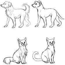 how to draw a cat and dog step by step pets s