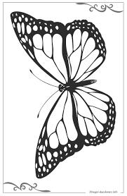 Farfalle Disegni Da Colorare Gratis Online
