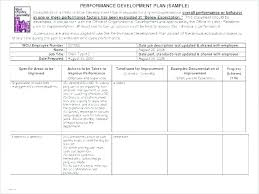 Employee Evaulation Form Performance Review Document Template Workplace Performance Review