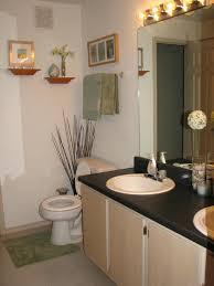Bathroom Theme Ideas For Apartments Amazing Small Apartment Bathroom