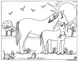 Horse Coloring Pictures Horse Coloring Pages For Kids Printable
