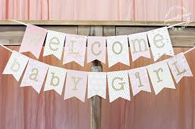 pink welcome amazon com pink and gold baby shower banner welcome baby girl