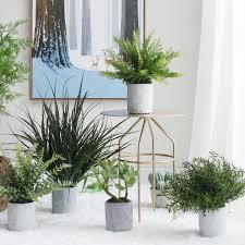 office bonsai. Sicilian Green Plants Simulation Plant Bay Leaf Potted Fern Bonsai Office Decoration Tree Ornaments R