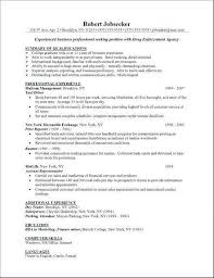 Computer Skills Resume Interesting Computer Skills On Resume Best Of 40 New Computer Literacy Skills