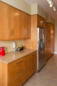 Contemporary Kitchen Design DC. Washington ...