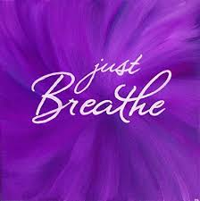 Purple Quotes Extraordinary Amazon Just Breathe 48x48 Inch Square Wall Art Print