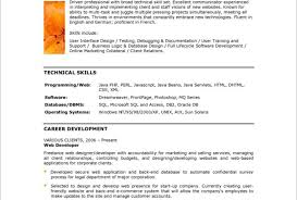Java Web Developer Resume Sample Pretty Experienced Php Developer Resume Sample Pictures Best It 40