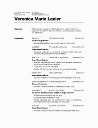 Professional Resume Writers Cost Business Analyst Sample How Much