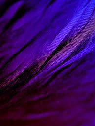 1536x2048 Dark Purple Texture 1536x2048 ...