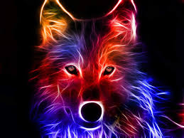 2560x1920 3d colorful fox wallpaper 1920x1080