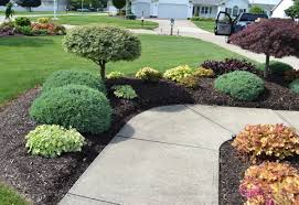 Stylish Small Bushes For Landscaping : Beautiful Small Bushes For ...