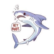 cute shark drawing tumblr. Delighful Shark Oh Cararara Transparent Sharks Png Library To Cute Shark Drawing Tumblr D