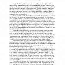 narrative descriptive essay examples outlines for descriptive  examples of an example essay cover letter template for descriptive essays example a essay narrative