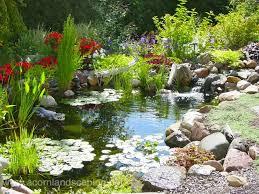 ecosystem pond maintenace spring pond