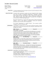 Professional Web Developer Resume Template Sample For Employment