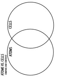Diagram Of An Atom Structure Of The Atom Atoms Vs Cells Compare And Contrast Venn Diagram