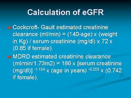 cystatin c as a marker of renal function