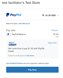 Paypal Payments Before To How Test Accepting Real