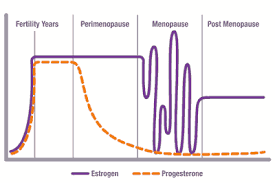 Menopause Hormone Levels Chart Enzymatic Therapy Inc Menopause Over 45 You Need