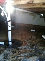 crawl space sump pump. Delighful Pump Sump Pump U0026 Pit Installed Crawl Space Throughout W