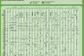 Companion Planting Chart Uk Planting Infographics Visual Ly
