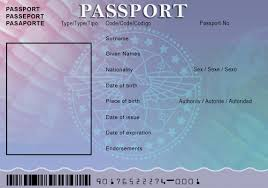 Us Passport Template Psd Us Passport Photo Template Template Business