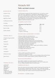 Sample Resume Format For Experienced 17 Impressive Examples College