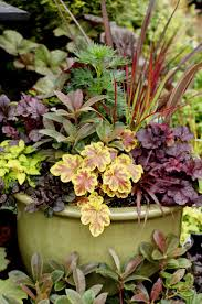 Shelley's container designs in British Columbia - Fine Gardening #NWFGS