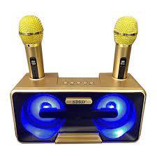 Loa karaoke mini SDRD SD-301