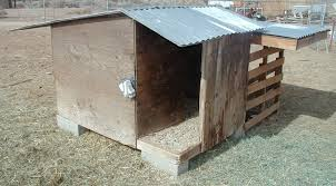 charming pygmy goat house plans photos best image home interior goat shed designs