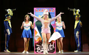 what you want legally blonde the musical wiki fandom powered  what you want