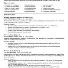 sales executive resume examples template enchanting sample resume free resume sle for sales executive sample example of executive resume