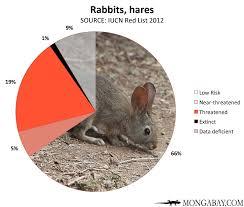 Chart Endangered Rabbits